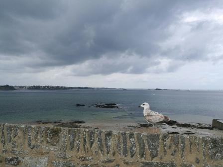 St Malo coast